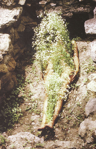 the simplistic complexity in silueta series a photographic artwoork by ana mendieta The assumption greek orthodox church the great schism the simplistic complexity in silueta series a photographic artwoork by ana mendieta and the schism of.