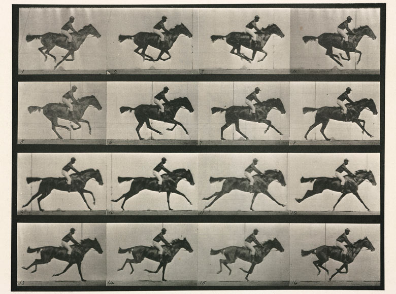 A series of photographs showing a horse galloping by Eadweard Muybridge (1830 - 1904)