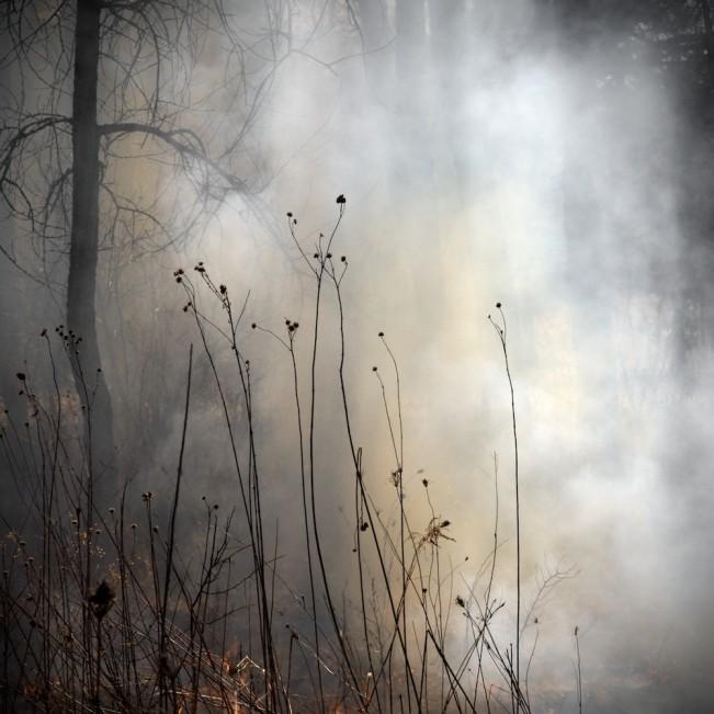 Burn-No.-99-651x651