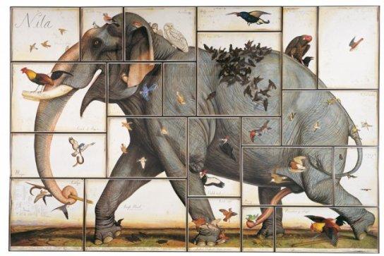 walton-ford-elephant-nila1